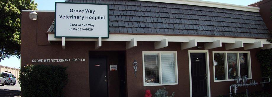Groveway Veterinary Hospital - Castro Valley, CA