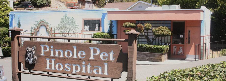 Pinole Pet Hospital