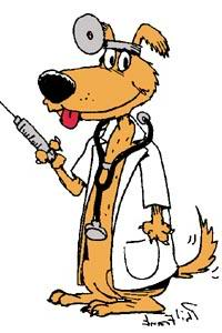 Dog Park Vaccinations