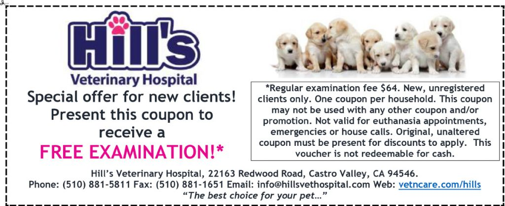 Hills New Client Coupon