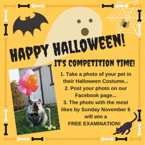 Halloween Photo Contest! Enter to win a FREE EXAM!