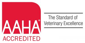 AAHA Accredited and Celebrating!