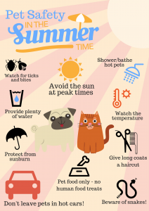 Pet Safety in the Summer Time!