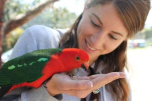 Meet our new Veterinarian: Dr. Amanda Mamo